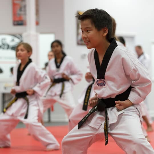 What's the difference between Tae Kwon Do and Karate?